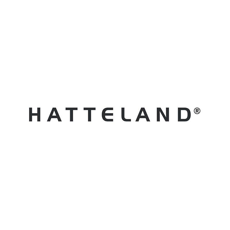 KOGGER_Microsoft partner_Hatteland