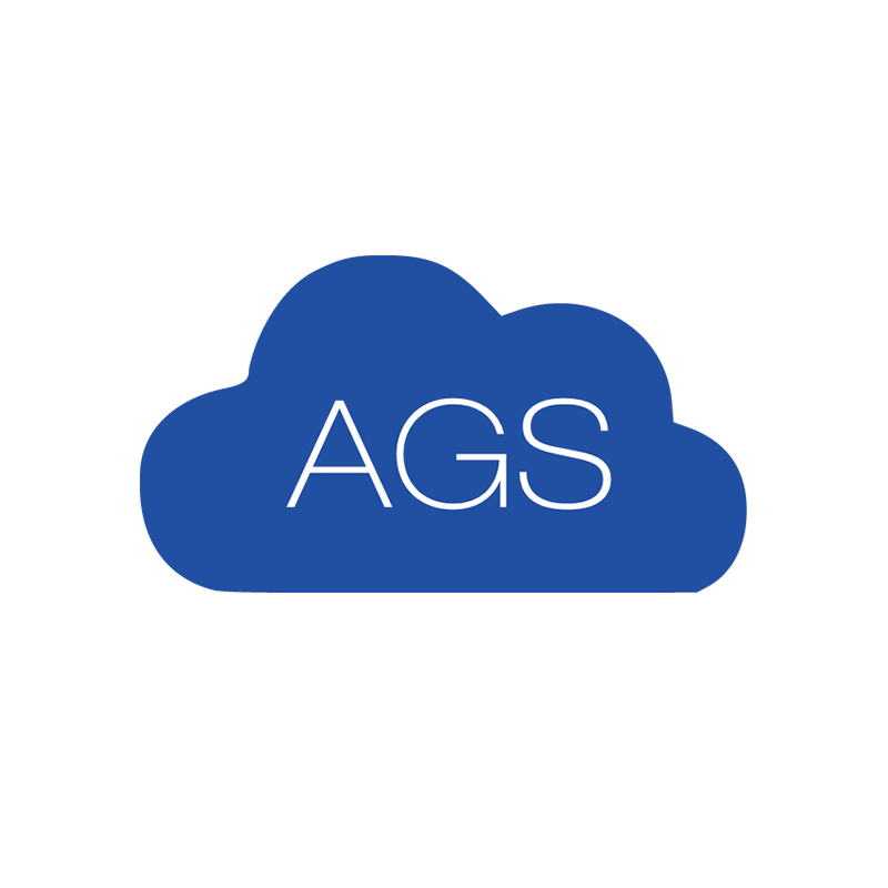 KOGGER_Microsoft partner_AGS