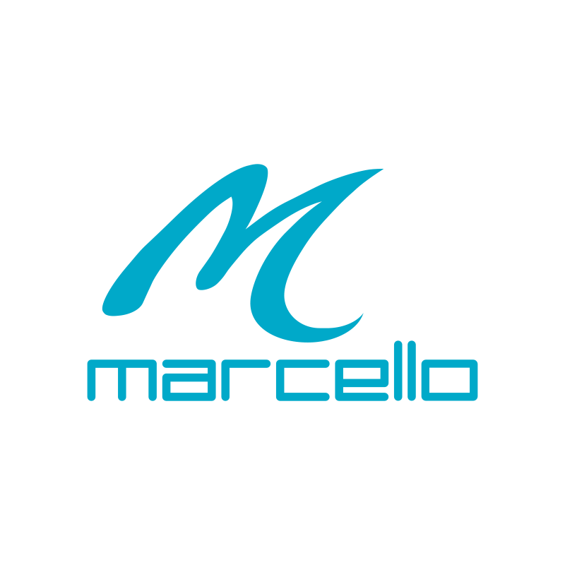 KOGGER_Microsoft partner_Marcello